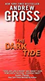 The Dark Tide by Andrew Gross (2012-04-24)
