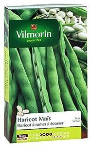 Vilmorin 1130553 Pack de Graines Haricot Soissons Maïs Type Tarbais