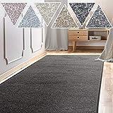 casa pura Teppich Läufer Sundae | Meterware | Teppichläufer für Wohnzimmer, Flur, Küche usw. | kuschlig weich | mit Stufenmatten kombinierbar (Anthrazit - 66x100 cm)