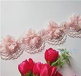 """Qiuda 2metres 3d Fleur Perle ruban DENTELLE Franges Bordure 6,1cm de large 6couleurs Tissu brodée Applique pour couture Craft Mariage Robe de mariée, rose, 6cm,60mm,2.36"""""""