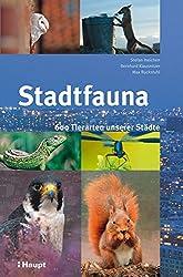Stadtfauna: 600 Tierarten unserer Städte