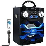 Altavoz Karaoke con Micrófono Bluetooth Portátil Inlámbrico USB Tarjeta TF Recargable con Radio FM