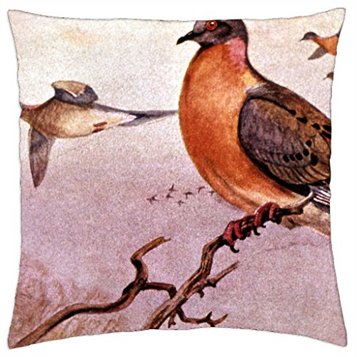 Passenger pigeon extinct:1914 - Throw Pillow Cover Case (18