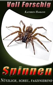 Spinnen - Voll Forschig: Nützlich, scheu, faszinierend