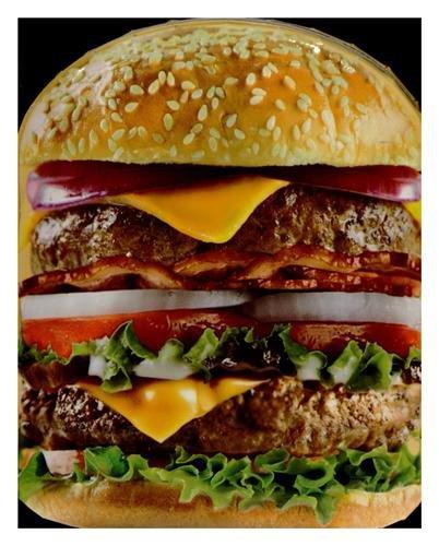 Livre forme Le meilleur des burgers maison