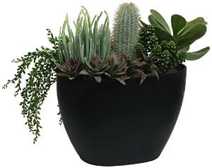 Branches & Blooms Arrangement de plantes grasses et succulentes artificielles mélangées Vert