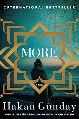 more-a-novel