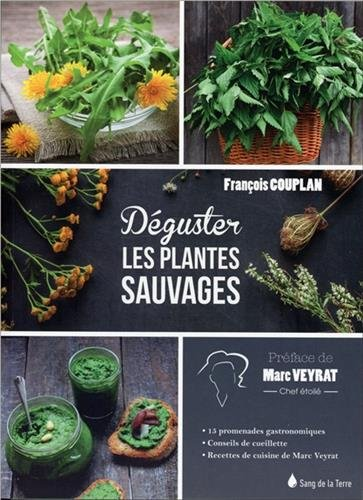 Dguster les plantes sauvages