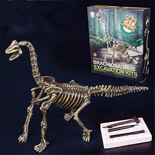 3D Skeleton Dinosaur Brachiosaurus Excavation Kits