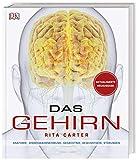 Das Gehirn: Anatomie, Sinneswahrnehmung, Gedächtnis, Bewusstsein, Störungen. Aktualisierte Neuausgabe