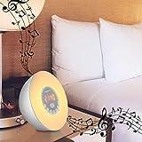 XECH™ Wake UP Light Speaker Wake-Up Light with Sunrise/Sunset Simulation Atmosphere Lamp, FM