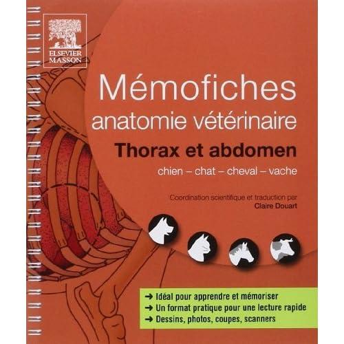Mémofiches anatomie vétérinaire - Thorax et abdomen de Saunders (20 mars 2013) Couverture à spirales