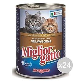 Miglior Gatto Set 24 Bocconcini Selvaggina 400 Gr. Cibo per Gatti