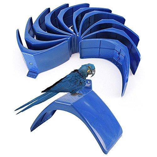 Taubenständer, 10 Stück Vogeltraubenständer, Stützzubehör, V-förmige Taubensitzstangen, Roostständer, Rahmen Wohnung für Taube, Taube und andere Vögel, blau -