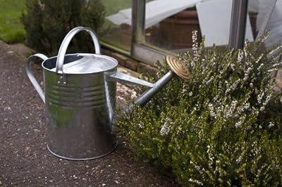 Apollo Gardening Metallgießkanne, verzinkt, 9 l von Apollo Gardening Ltd - Du und dein Garten