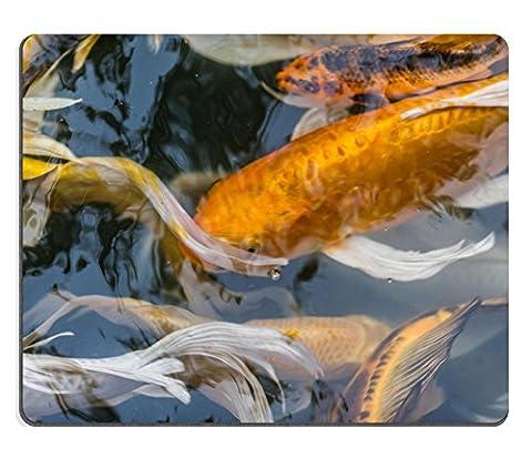 MSD en caoutchouc naturel Tapis de souris Image ID: 30526847Superbe koï de natation dans le bassin 442