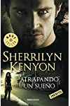 https://libros.plus/atrapando-un-sueno/
