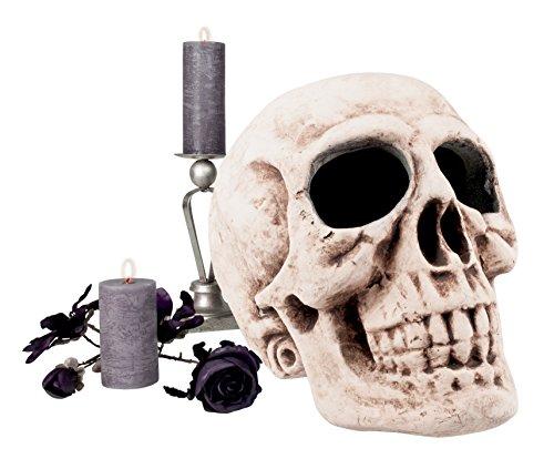 Boland 74522 - Totenkopf Master brain, Dekorationen, circa 40 x 35 (Kostüme Hüten Halloween Mit)