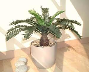 Cycas Farn, Kunstpflanze (52cm) ohne Topf