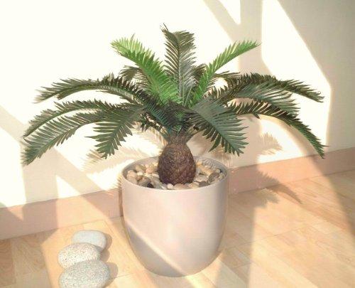 cycas-fougere-52cm-plante-artificielle-sans-pot