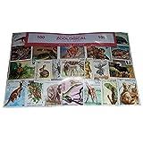 Aufregende Zoologische Briefmarken, Welt, weltweit, Wilde Tiere Collectible set 100Stück Briefmarken. Souvenir/Speicher/MEMORIA. 100verschiedene Briefmarken. timbre-poste/Briefmarke/francobollo/Sello (Einkaufszentrum) de CORREOS.