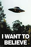 Poster The X-Files - I Want To Believe - preiswertes Plakat, XXL Wandposter
