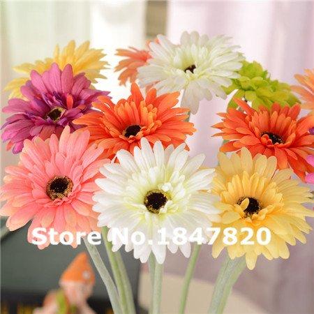 nuovi-99pcs-di-alta-qualita-semi-freschi-artificiale-gerbera-fiori-sementi-di-crisantemo-daisy-gerbe