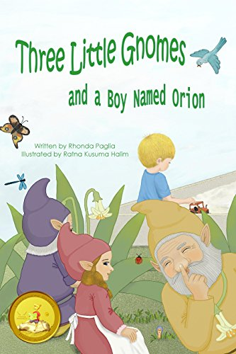 Three Little Gnomes and a Boy Named Orion (English Edition)