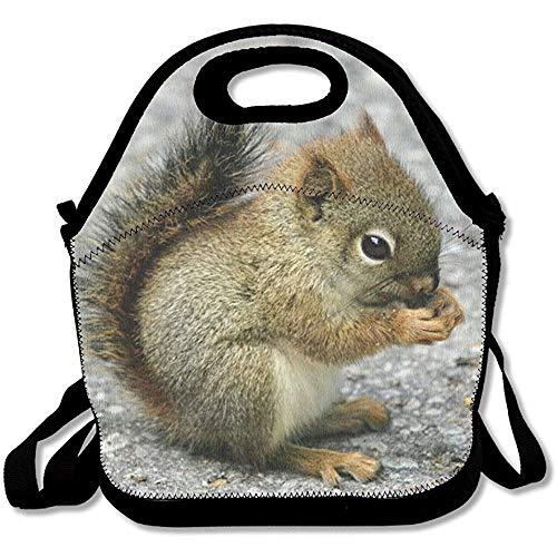 arthur thom Wiederverwendbare Lunch Tasche Little Squirrel Food Handbag Benutzerdefinierte Lunch Halterung Gedruckte Lunch Einkaufstasche Multifunktions Lunch Box Organizer Für Erwachsene und Kinder (Benutzerdefinierte Gedruckte Taschen)