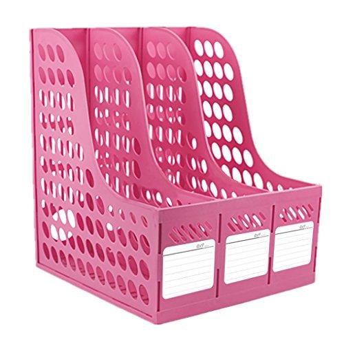 Georgie portariviste portariviste-Order formato A4× 3colori assortiti plastica verde rosa