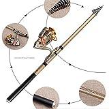 QQA Angelsets Spinnrute und Angelrollen Combo Teleskoprute Salzwasser Angelruten Kit, 3.0 m