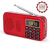 Radio J-725C Portable Radio-réveil FM/MP3/SD/USB/Horloge PRUNUS avec Batterie de Grande Capacité(3000mAh). Lecture Longue...