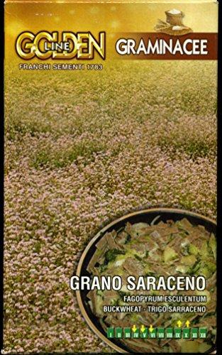 grano-saraceno-da-semina-in-confezione-da-100-grammi