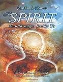 The Spirit: That Stranger Inside Us
