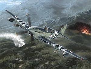 Special Hobby 48136 SH - Kit Modelo Fairey Firefly MK.4 / 5, Guerra de Corea