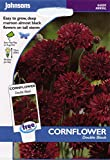 johnsons seeds - Pictorial Pack - Fiore - Fiordaliso Double Nero - 250 Semi