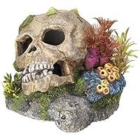 """Nobby 28102 Aquarium Dekoration Aqua Ornaments """"TOTENKOPF"""" mit Pflanzen; L13,5 x B13,5 x H10,5 cm"""