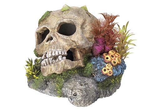 """Nobby 28102 Aquarium Dekoration Aqua Ornaments \""""TOTENKOPF\"""" mit Pflanzen; L13,5 x B13,5 x H10,5 cm"""