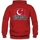 Türkei EM 2016