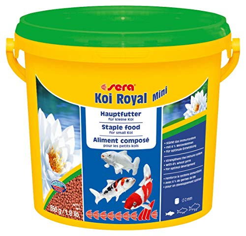 sera 07112 KOI ROYAL MINI 3800 ml - Hauptfutter für die optimale Entwicklung von Koi bis 12 cm -