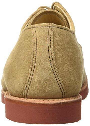 WALKOVER Derby Vibram, Chaussures à Lacets Homme Marrone (Beige)