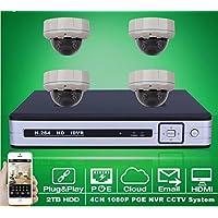 Gowe 4 CH NVR PoE sistema sistema sistema CCTV ONVIF P2P 1080p 2.0 MP Ful HD Vandalproof Dome IR PoE IP telecamera di sorveglianza di sicurezza kit | benevento  | Di Prima Qualità  | Alta qualità ed economia  2bd7a7
