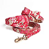 Haustierleine Bronzierende Haustier-roter Kragen-Lederwelpen-Dreieck-Schal mit Haustierleinen-Satz. (größe : M)