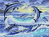 shukqueen DIY Malen nach Zahlen für Erwachsene, DIY Ölgemälde Kit für Kinder Anfänger–Dolphin 40,6x 50,8cm, Delfin, Frameless,Just Canvas