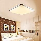 Azerogo 12W LED Deckenleuchte Modern Deckenlampe Ultraslim Flur Wohnzimmer Lampe Wandleuchte Energie Sparen Licht Silber [Energieklasse A++]