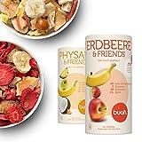 Buah | Gourmet Gefriergetrocknete Frucht-Mischung | Knuspriger Snack | Bester Geschmack für Smoothie und Müsli | Ohne Zusätze