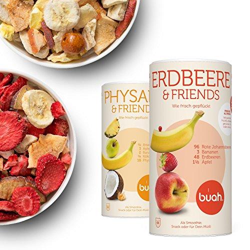 Gefriergetrocknete Früchte & Superfoods für leckere Früchte-Smoothies und gesunde Snacks zwischendurch | BUAH® SMOOTHIE-FAMILIEN-KORB | 2x BigTube | 100% Frucht | 0% Zusätze | Healthy - Herzhafte Halloween-party Snacks