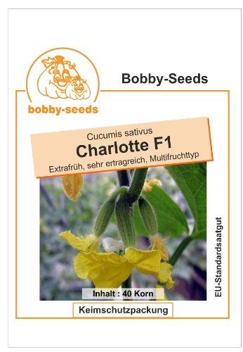 Bobby-Seeds Gurkensamen Charlotte F1 Portion