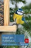 Vögel am Futterhaus: Erkennen und richtig füttern - Michael Lohmann