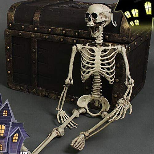THEE Halloween Karnaval Fasching Skelett Schädel Knochen Anatomie -